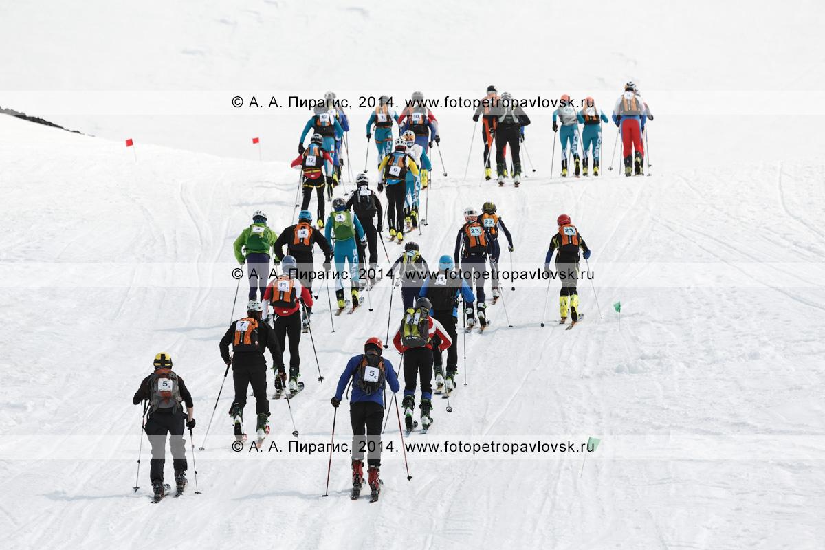 """Большая группа ски-альпинистов взбираются на гору на лыжах с пристегнутым камусом. Ски-альпинизм — командная гонка. Чемпионат Азии по ски-альпинизму, чемпионат и первенство России по ски-альпинизму, международные соревнования ISMF series """"Kamchatka Race"""", чемпионат и первенство Камчатского края по ски-альпинизму"""