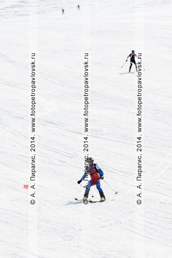 """Ски-альпинисты скатываются на лыжах по склону Авачинского вулкана. Ски-альпинизм — командная гонка. Чемпионат Азии по ски-альпинизму, чемпионат и первенство России по ски-альпинизму, международные соревнования ISMF series """"Kamchatka Race"""", чемпионат и первенство Камчатского края по ски-альпинизму"""