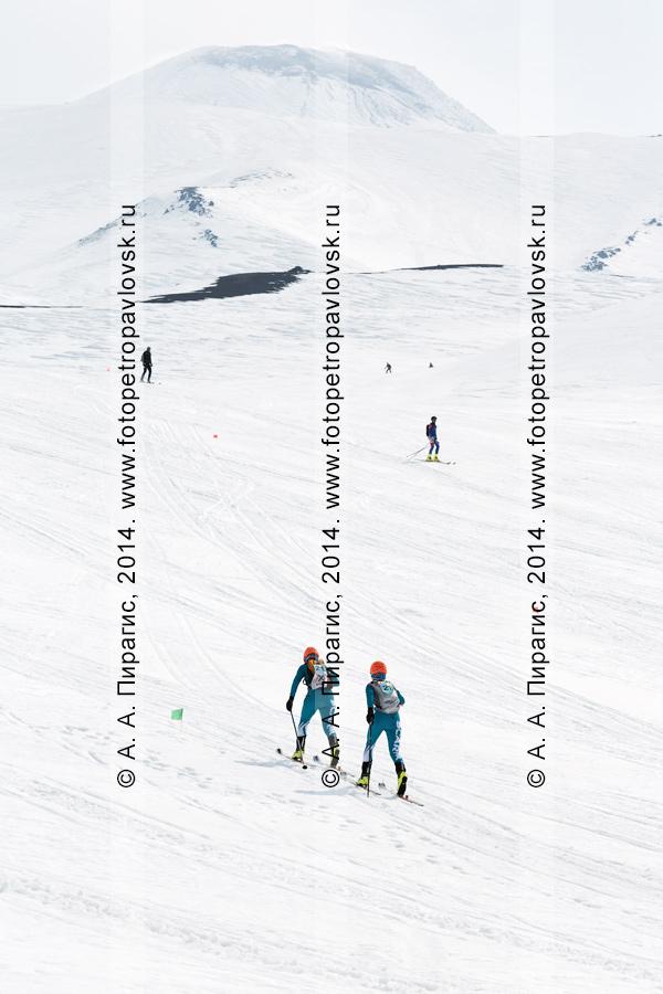 """Ски-альпинисты на склоне действующего Авачинского вулкана на Камчатке. Ски-альпинизм — командная гонка. Чемпионат Азии по ски-альпинизму, чемпионат и первенство России по ски-альпинизму, международные соревнования ISMF series """"Kamchatka Race"""", чемпионат и первенство Камчатского края по ски-альпинизму"""