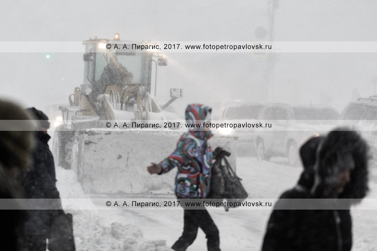 Фотография: колесный погрузчик чистит автодорогу во время пурги (метели) в городе Петропавловске-Камчатском