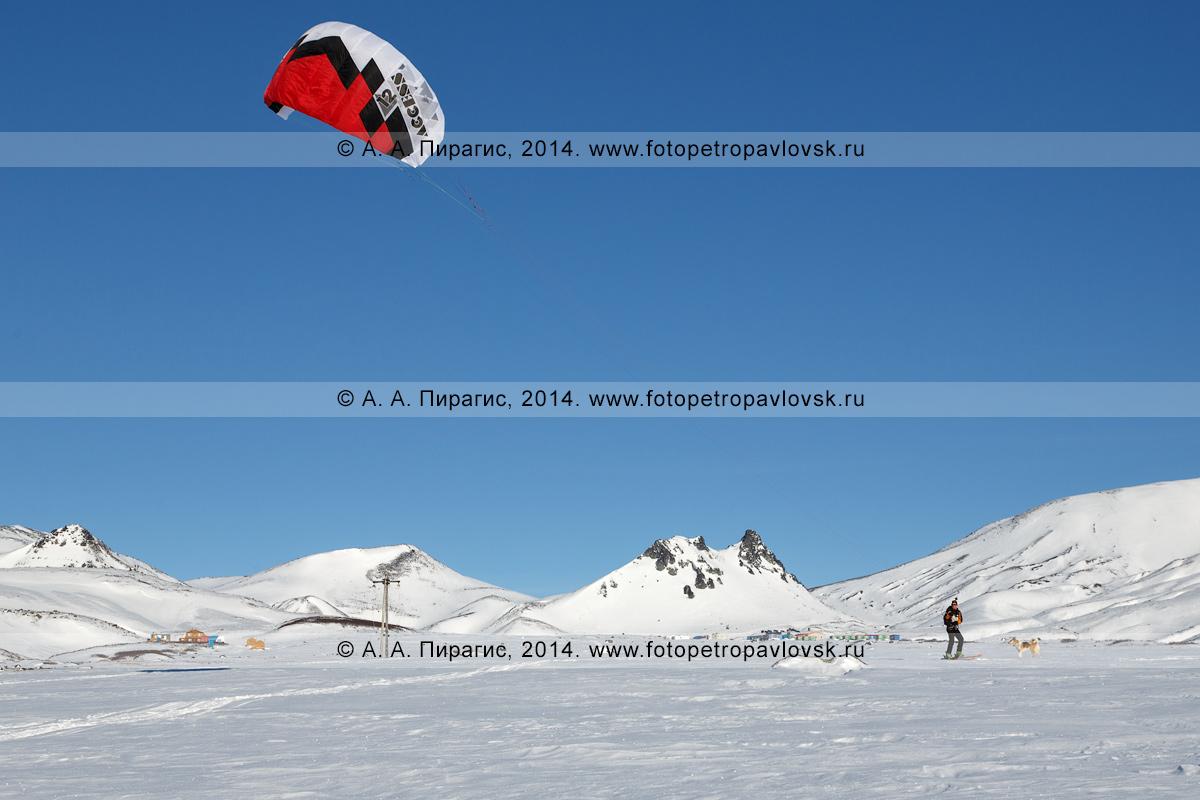 Фотография: зимний кайтинг (сноукайтинг, snowkiting) на фоне горы Верблюд на Авачинском перевале. Камчатка