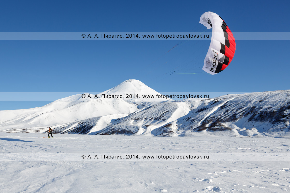 Фотография: сноукайтинг (зимний кайтинг, snowkiting) на Камчатке, катание на фоне Авачинского вулкана
