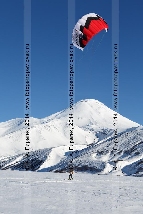 Фотография: сноукайтинг (зимний кайтинг, snowkiting) под Авачинским вулканом. Камчатка