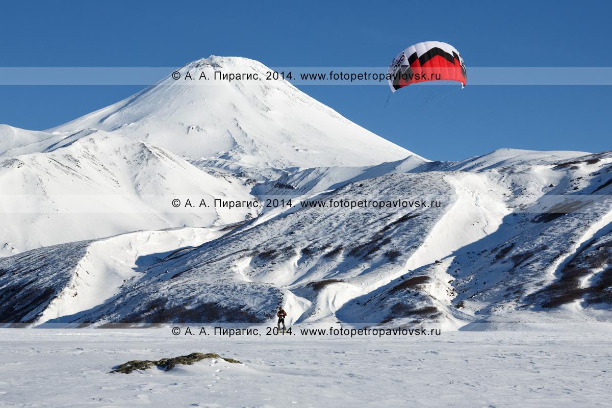 Фотография: камчатский зимний кайтинг (сноукайтинг, snowkiting) под Авачинским вулканом. Камчатка