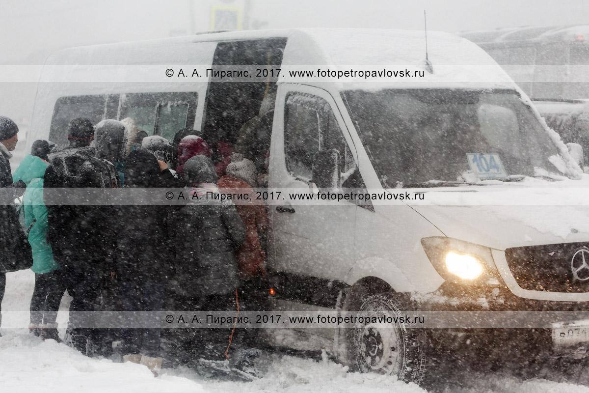 Фотография: пурга в городе Петропавловске-Камчатском, давка пассажиров, желающих сесть в междугородний микроавтобус маршрута №104 на остановке общественного транспорта