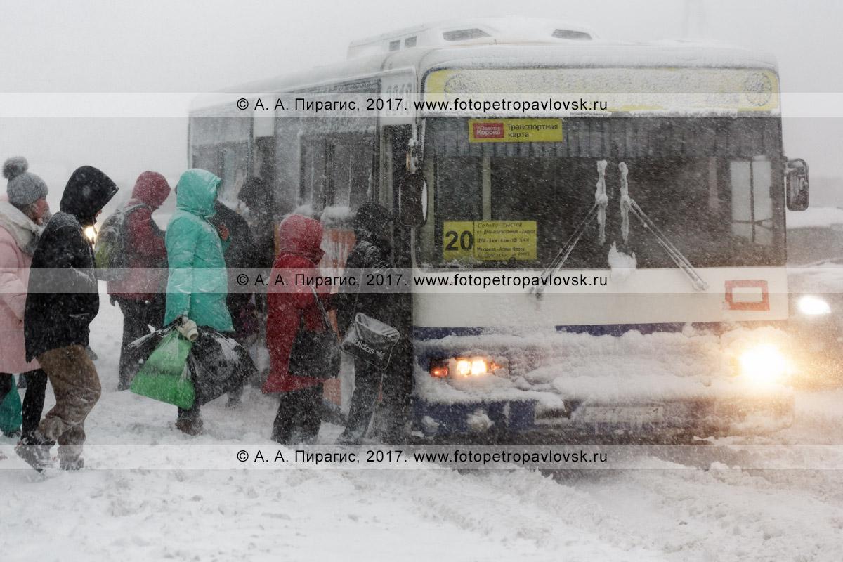 Фотография: метелица в городе Петропавловске-Камчатском, жители столицы Камчатского края садятся на остановке городского общественного транспорта в пассажирский автобус, следующий по маршруту №20