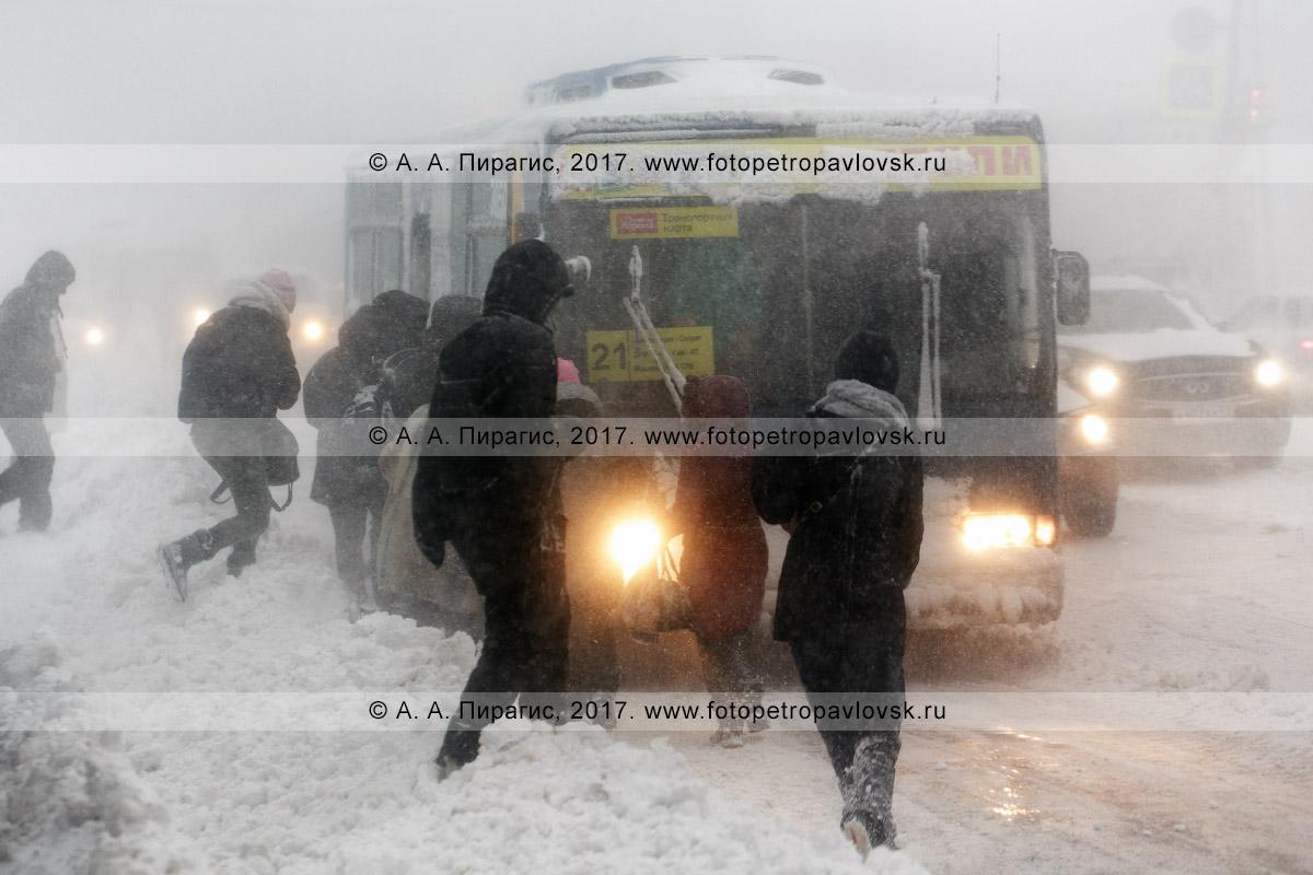 Фотография: зимний снежный циклон в столице Камчатского края, пассажиры садятся в автобус маршрута №21, подъехавший на остановку городского общественного транспорта во время пурги (метели)