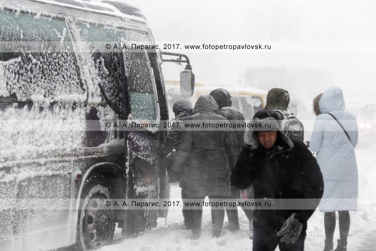 Фотография: сильный снегопад в городе Петропавловске-Камчатском, посадка пассажиров в автобус во время снежного циклона