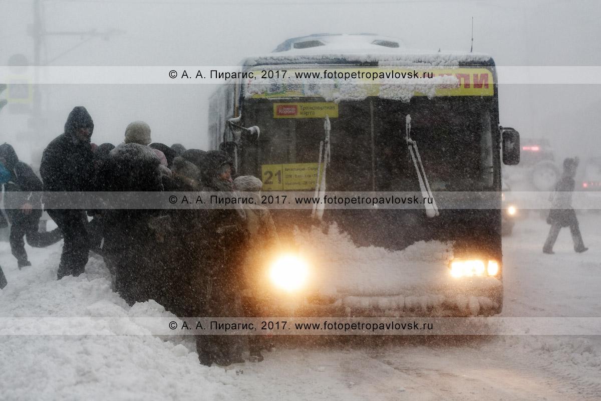 Фотография: зимняя непогодица в городе Петропавловске-Камчатском, очередь пассажиров, желающих сесть в автобус маршрута №21 на остановке городского общественного транспорта во время вьюги