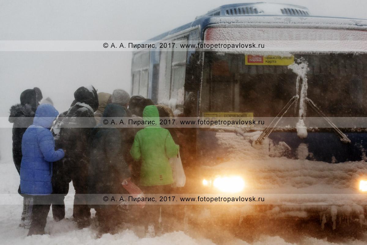 Фотография: метель в городе Петропавловске-Камчатском, очередь из пассажиров, стремящихся сесть в автобус маршрута №26 на остановке городского общественного транспорта