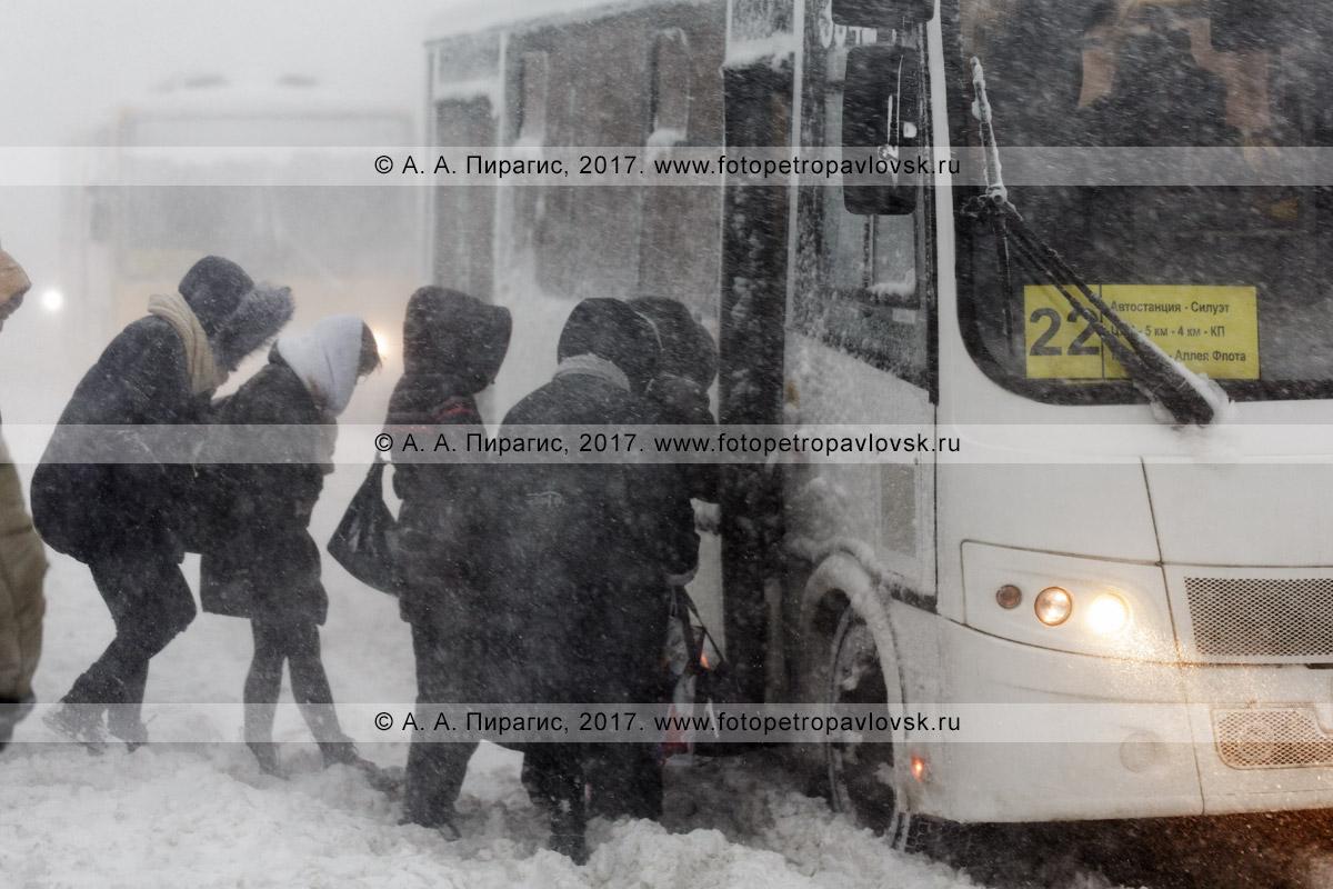 Фотография: пурга в городе Петропавловске-Камчатском, очередь пассажиров, залезающих в автобус маршрута №22 на остановке городского общественного транспорта