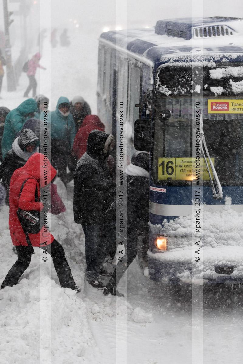 Фотография: снежный буран в городе Петропавловске-Камчатском, пассажиры садятся на остановке городского общественного транспорта в автобус, следующий по маршруту №16