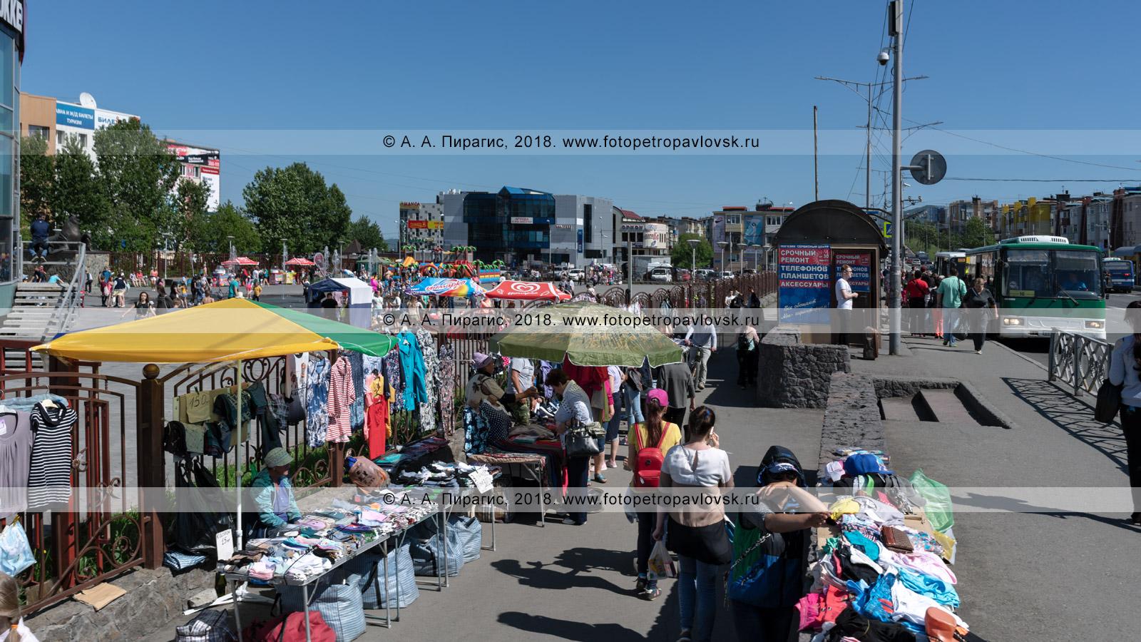 Фотография: уличная торговля в несанкционированном (неустановленном) для этого месте: пешеходной дорожке, тротуаре, автобусной остановке. Город Петропавловск-Камчатский