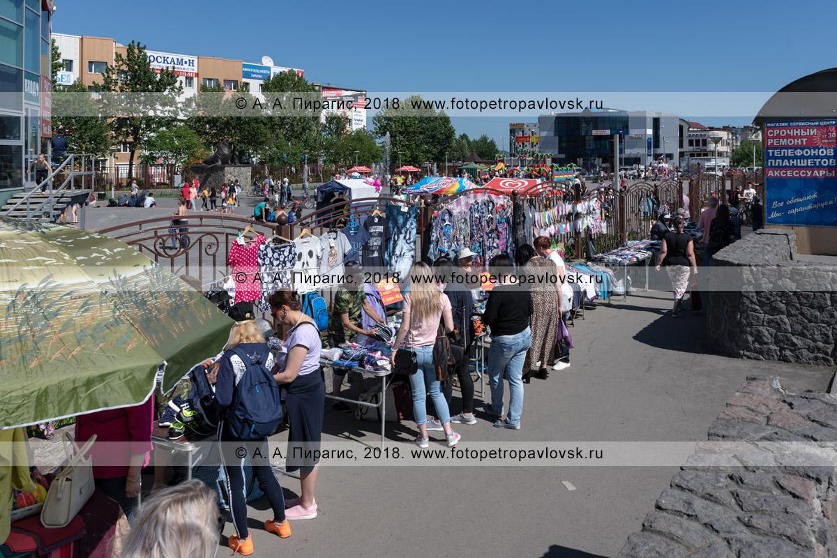 Фотография: город Петропавловск-Камчатский, уличная продажа товаров широкого потребления в неустановленном (несанкционированном) для этого месте: тротуаре, пешеходной дорожке, автобусной остановке
