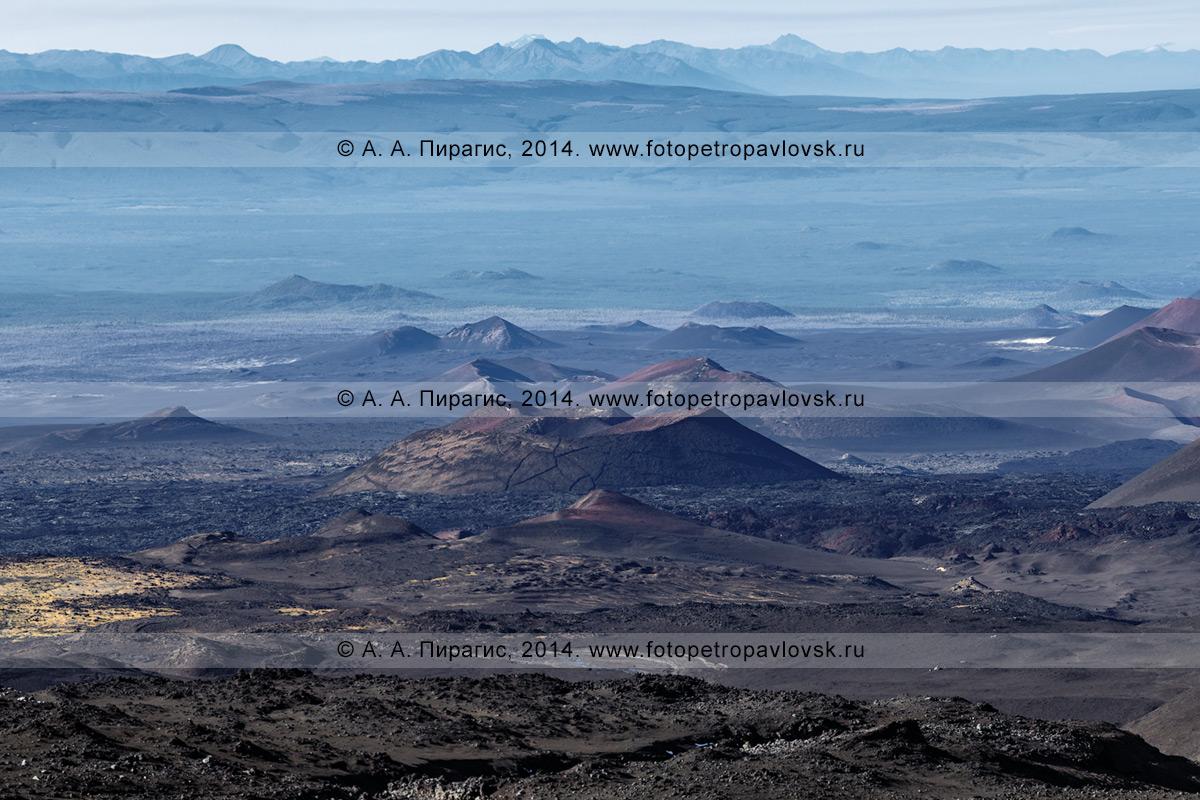 Фотография: Толбачинский дол на Камчатке, летний вулканический пейзаж, вид на шлаковые конусы побочных прорывов трещинных извержений вулкана Плоский Толбачик