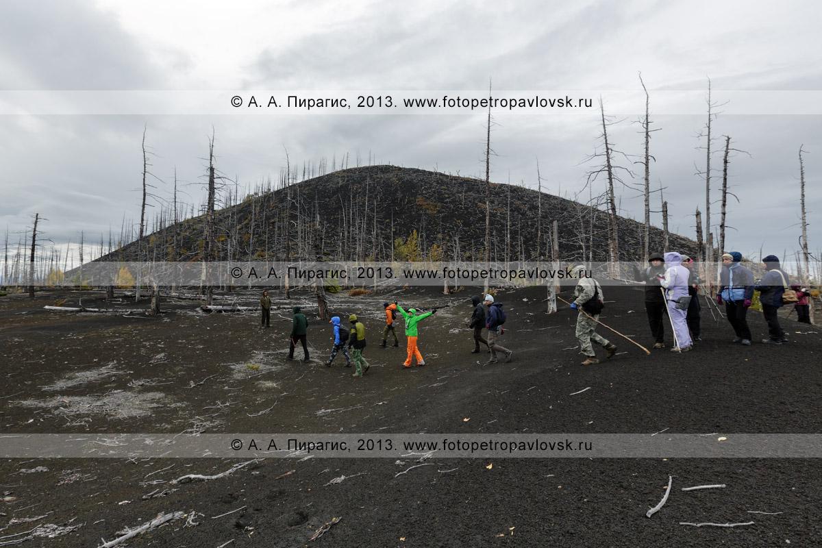 Фотография: пеший туризм на полуострове Камчатка — большая группа туристов и путешественников гуляет в Мертвом лесу на Толбачинском долу
