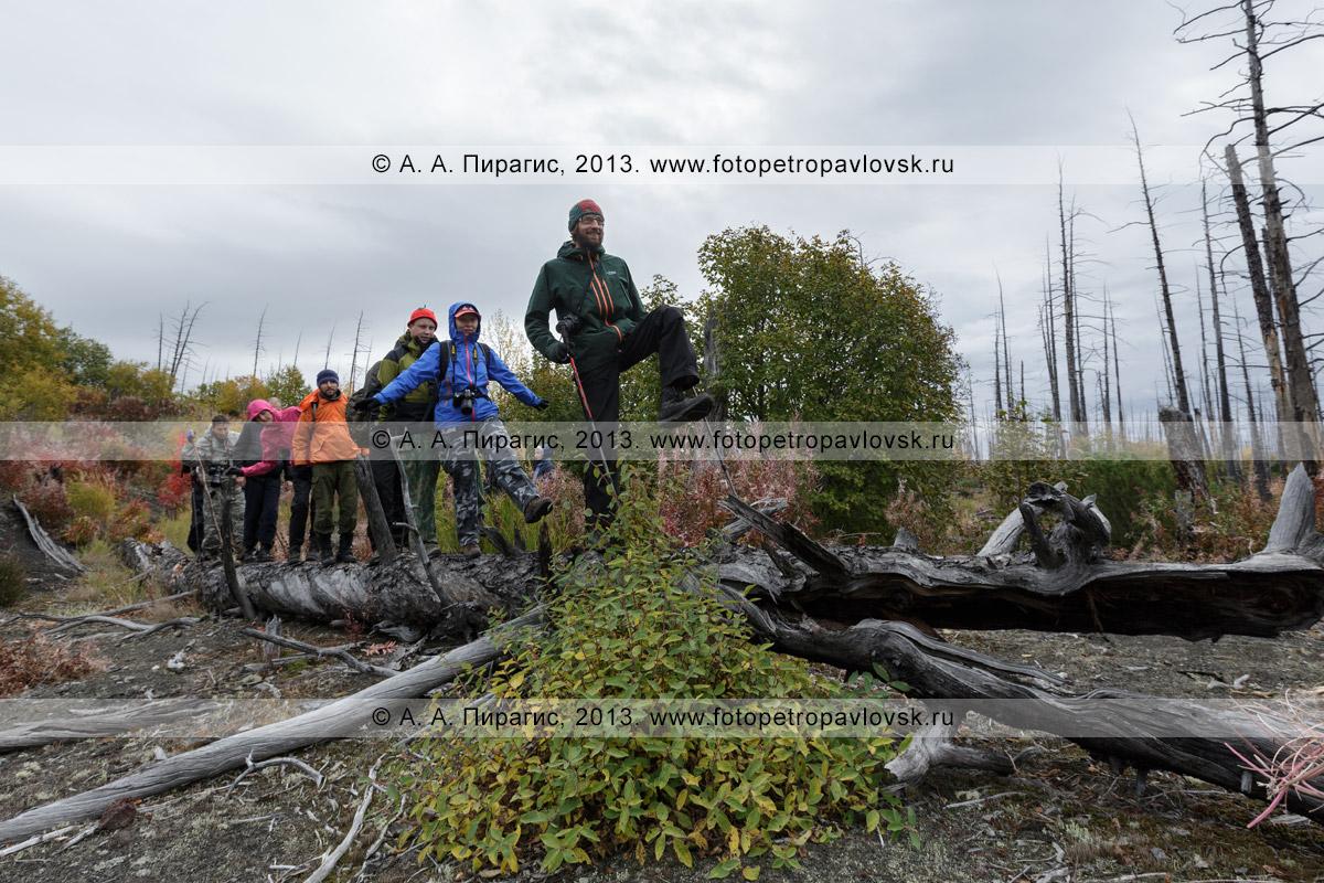 Фотография: пеший туризм на Камчатке — туристы и путешественники гуляют в Мертвом лесу на Толбачинском долу