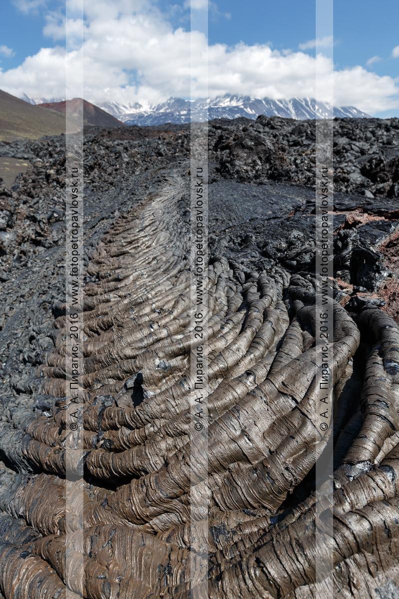 Фотография: вулканический пейзаж Камчатки, канатная лава Трещинного Толбачинского извержения имени 50-летия ИВиС ДВО РАН. Камчатский край, Ключевская группа вулканов