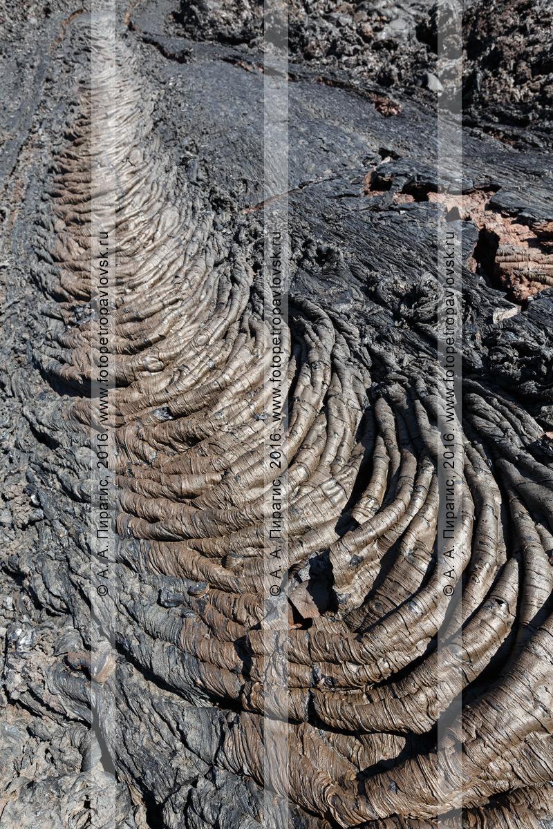 Фотография: канатная лава Трещинного Толбачинского извержения имени 50-летия Института вулканологии и сейсмологии ДВО РАН. Полуостров Камчатка, Ключевская группа вулканов