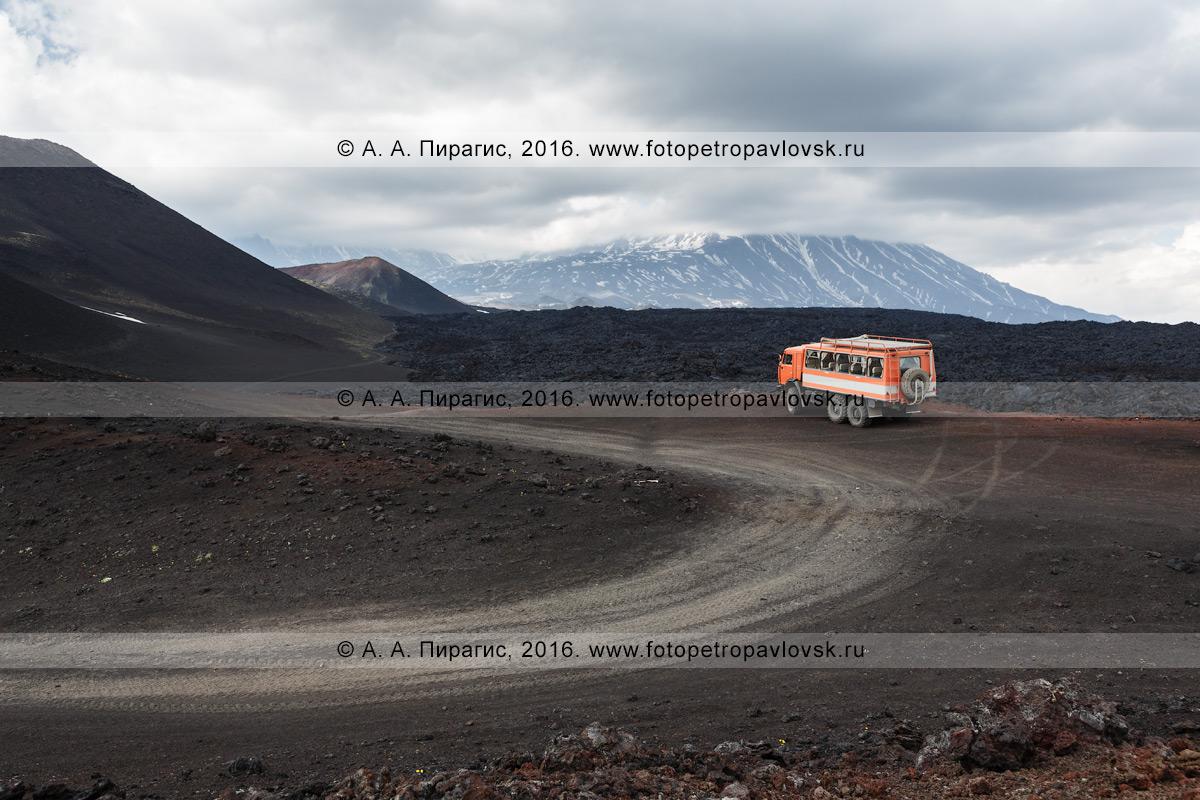 Фотография: автомобильная дорога на Толбачинском долу, ведущая к лавовому потоку Трещинного Толбачинского извержения и началу туристической тропы. Полуостров Камчатка, Ключевская группа вулканов