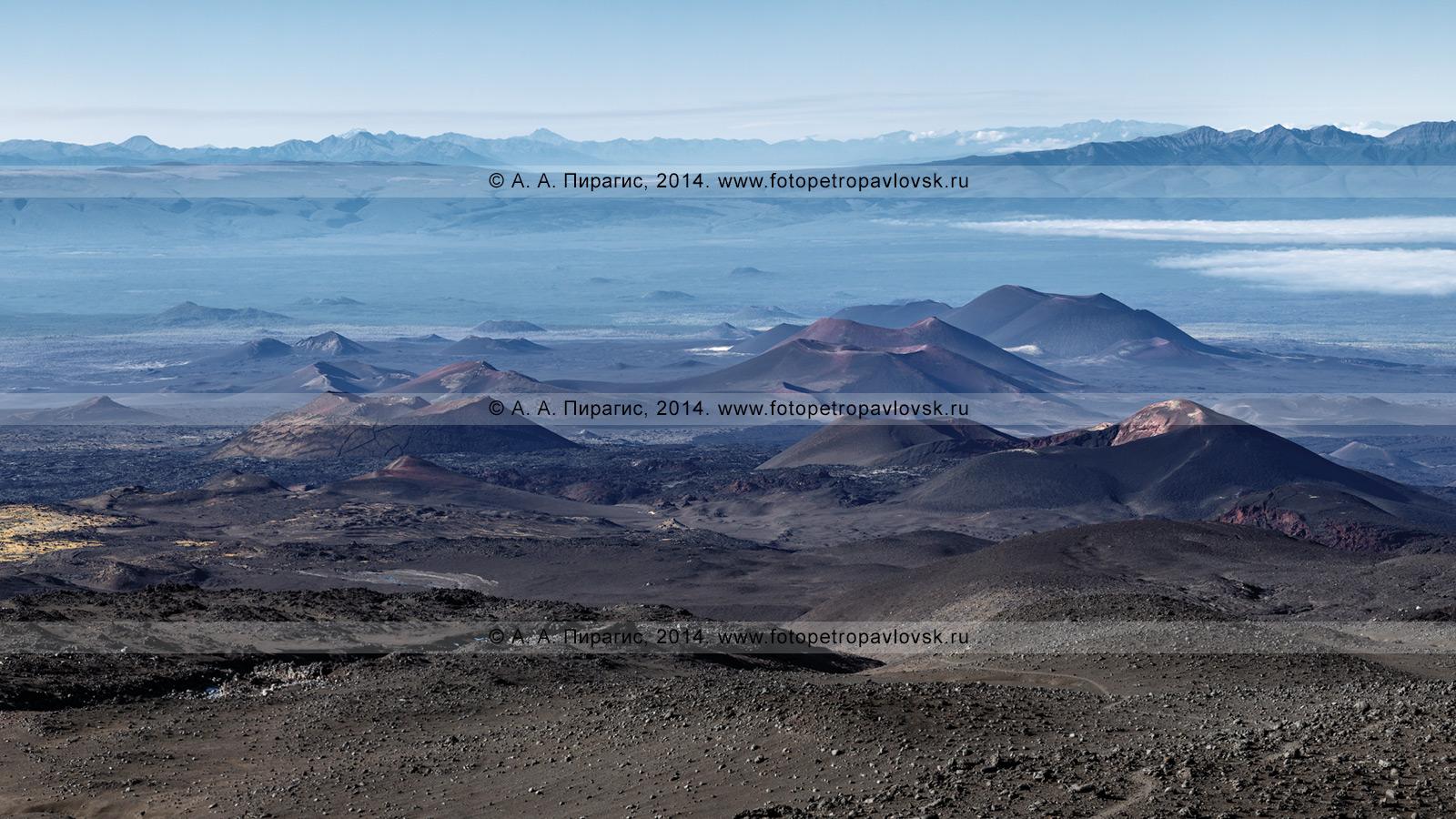 Фотография: панорамный вид на Толбачинский дол на Камчатке, шлаковые конусы (сопки): Софьи Набоко (Трещинное Толбачинское извержение); Клешня, Песчаная, Алаид; 3-й конус, 2-й конус и Горшкова (Большое трещинное Толбачинское извержение) и другие побочные прорывы