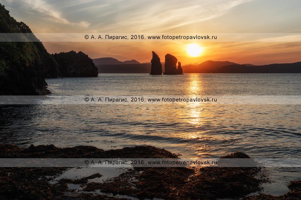 Фотография: живописный пейзаж Камчатки — красивый вид на скалы Три Брата в Авачинской губе на закате солнца. Камчатский край, Авачинская губа, бухта Шлюпочная