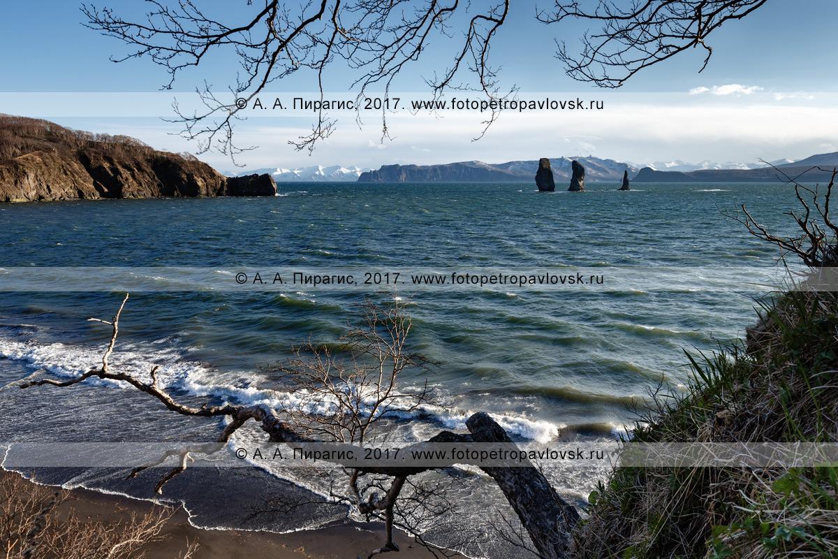 Фотография: живописный морской пейзаж — вечерний вид на скалы Три Брата в бухте Шлюпочной в Авачинской губе (Авачинская бухта) и мыс Маячный на полуострове Камчатка