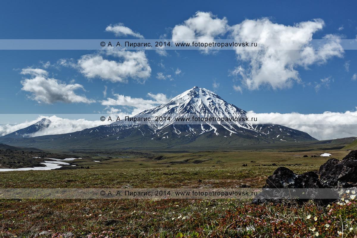 Фотография: живописный вид на вулкан Большая Удина (Bolshaya Udina Volcano). Камчатка, Ключевская группа вулканов