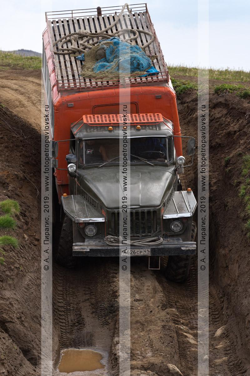 Фотография: вахтовка Урал перевозит пассажиров — туристов и путешественников по грунтовой горной дороге в Камчатском крае