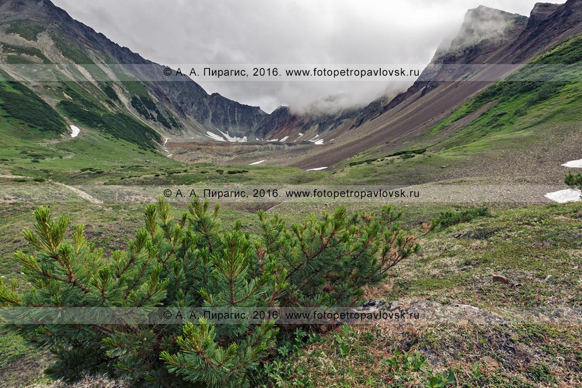 Фотография: красивый летний пейзаж Камчатки, вид на горный цирк в верхней части горы Летняя Поперечная в районе горного массива Вачкажец в Камчатском крае