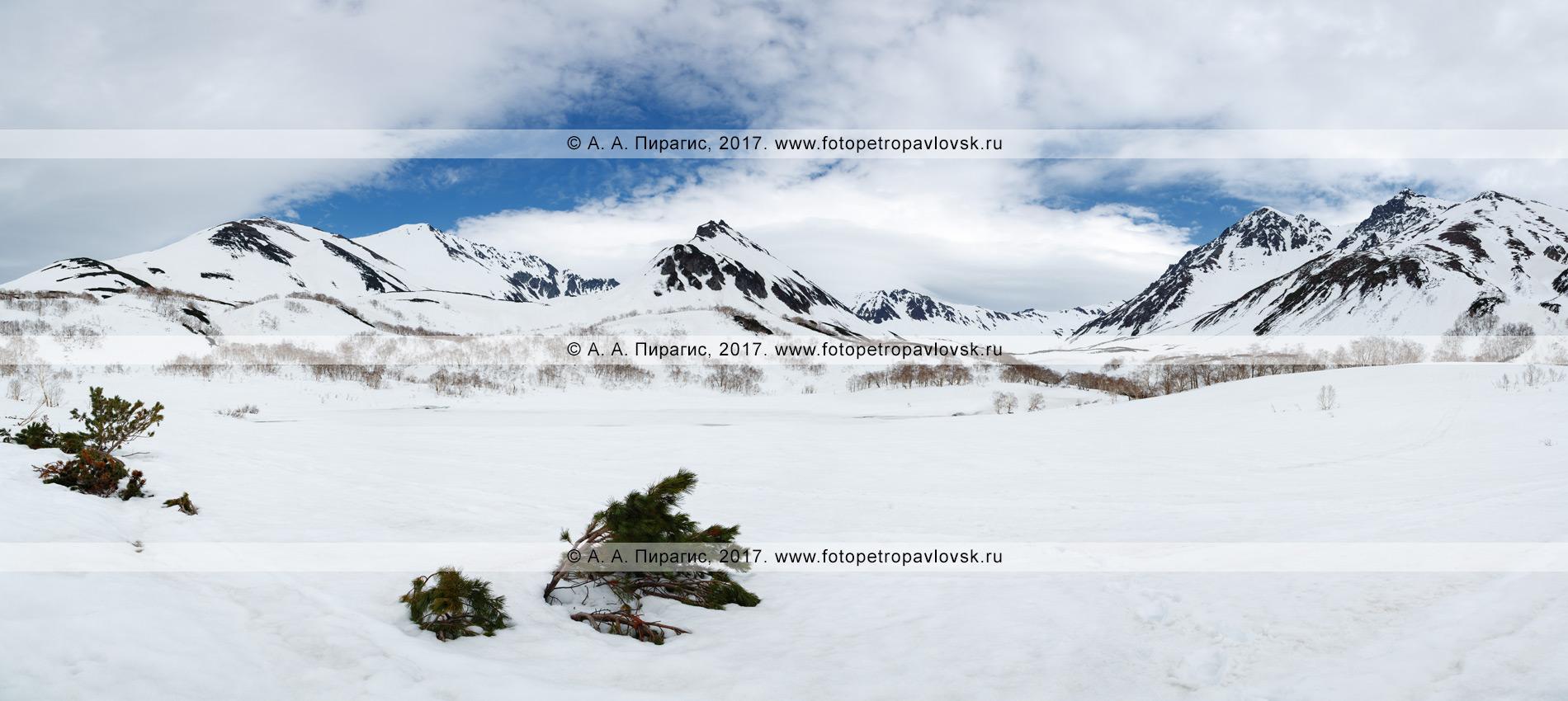 Фотография: камчатский горный пейзаж — панорамный вид на горный массив Вачкажец и озеро Тахколоч, которое только начинает освобождаться от льда и снега. Полуостров Камчатка, Южно-Быстринский хребет