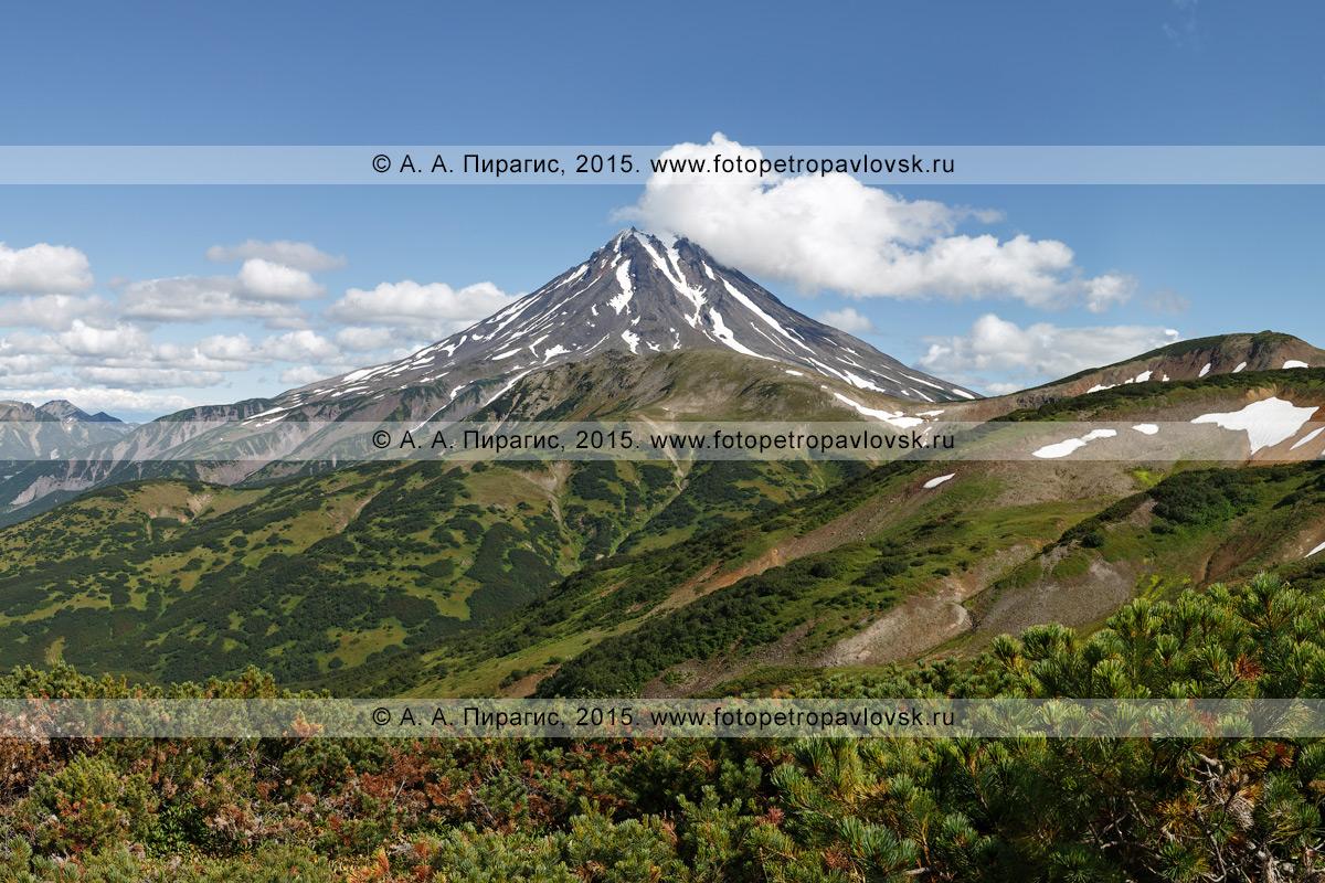 Фотография: камчатский пейзаж — живописный вид на Вилючинский вулкан (Vilyuchinsky Volcano) с Вилючинского перевала. Камчатка
