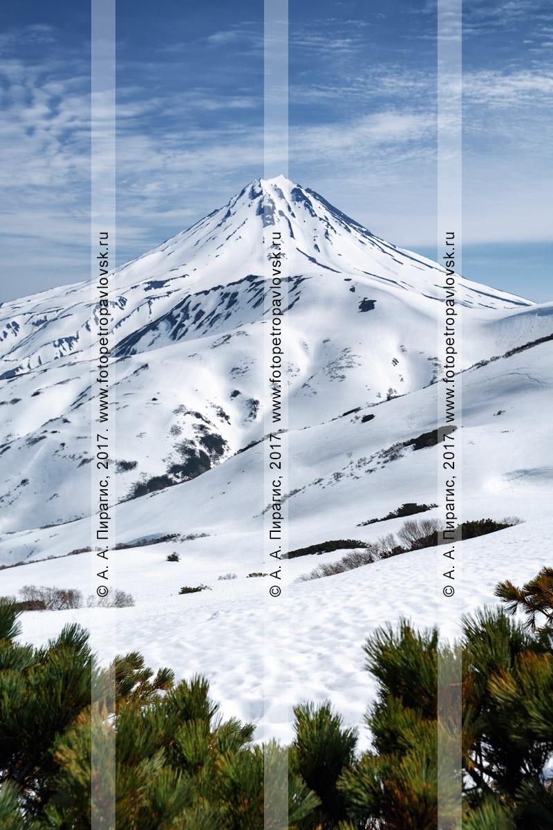 Фотография: летний вид с Вилючинского перевала на живописный Вилючинский вулкан (Vilyuchinsky Volcano). Полуостров Камчатка