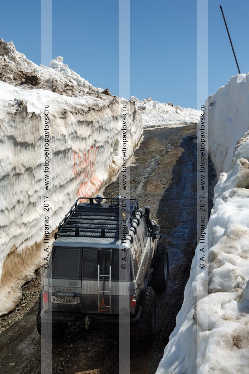 Фотография: полноприводный японский автомобиль Toyota Land Cruiser Prado поднимается по горной дороге в узком многометровом снежном тоннеле на Вилючинском перевале на полуострове Камчатка
