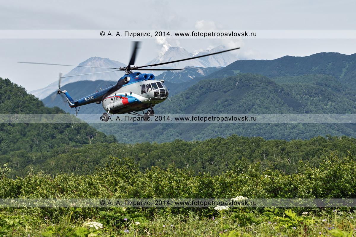 Фотография: вертолет летит на фоне сопок и вулкана Жупановская сопка на Камчатке