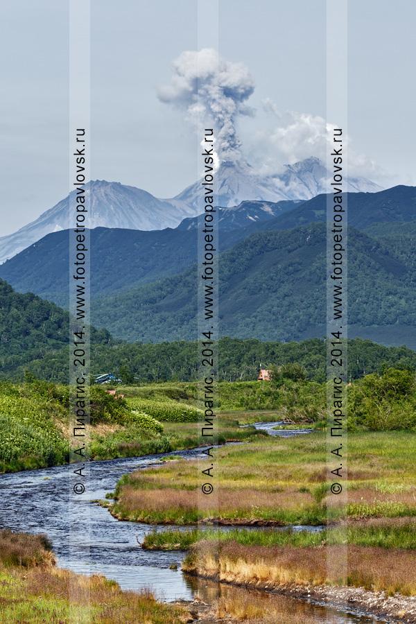 Фотография: извергающийся вулкан Жупановская сопка и река Горячая. Полуостров Камчатка, Налычево