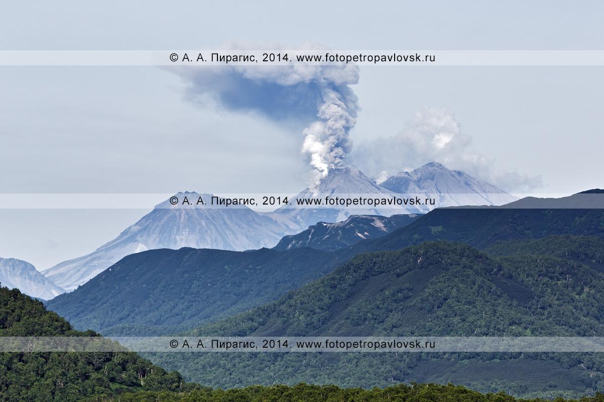 Фотография: красивый камчатский пейзаж — извержение Жупановского вулкана (Zhupanovsky Volcano)