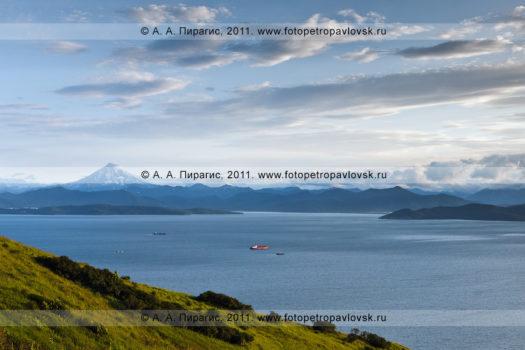 Фотография: Авачинская губа (Авачинская бухта), полуостров Камчатка