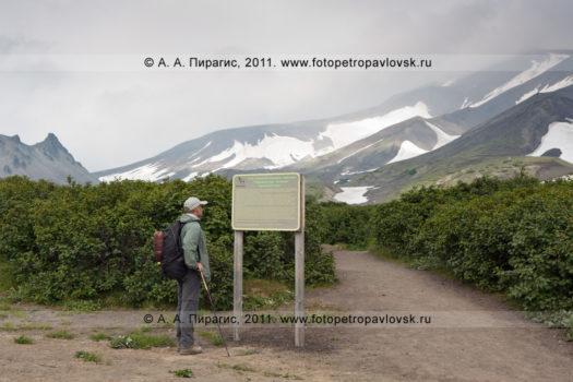 Фотография Авачинского перевала, начало туристического маршрута на вершину Авачинского вулкана на Камчатке