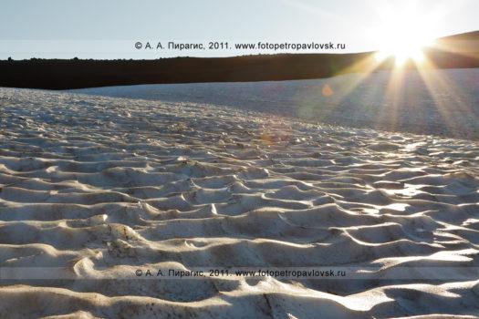 Фотография снежника, освещенного первыми лучами солнца на Авачинском перевале