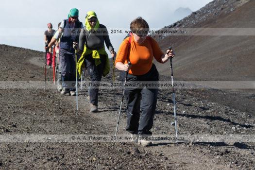 Фотографии: туристическая группа идет по тропинке на вершину Авачинского вулкана на полуострове Камчатка