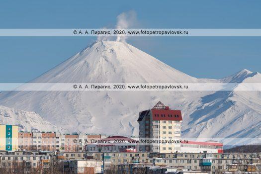 Две фотографии зимнего города Петропавловска-Камчатского на фоне конуса действующего вулкана Авачинская сопка на полуострове Камчатка