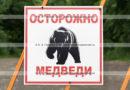 Камчатский предупреждающий знак «Осторожно медведи»