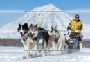 Фотографии каюра Ивана Нивани, собачьей упряжки породы лайка во время гонки «Берингия» на полуострове Камчатка