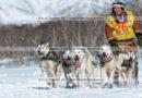 Фотографии собачьей упряжки породы камчатская ездовая камчатского каюра Валерия Соколова во время гонки-пролога «Берингия» на полуострове Камчатка.