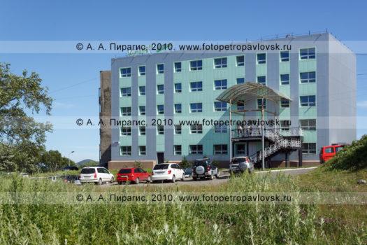 Фотография Центра занятости населения города Петропавловска-Камчатского