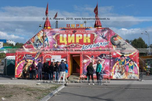 Фотографии шатра цирка шапито Адреналин, очередь зрителей в кассу цирка