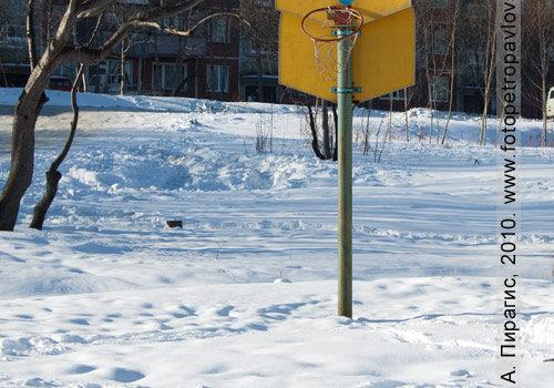Фотографии баскетбольной площадки в Петропавловске-Камчатском