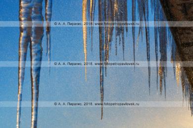 Фотографии свисающих сосулек с крыши здания в Петропавловск-Камчатском городском округе
