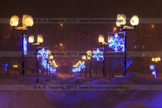 Фотографии праздничной новогодней иллюминации в городе Петропавловске-Камчатском